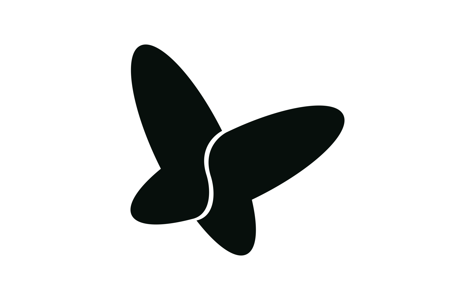 Company - Spineart